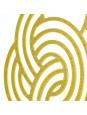 Par Brincos Eloá Banhado Em Ouro Amarelo 18 k - 1030044
